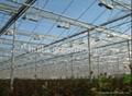Led Light for Greenhouse Plant 2