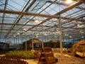 Led Light for Greenhouse Plant 3
