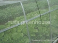 Insect Proof Net