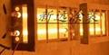 紅外線固化爐xytz-003
