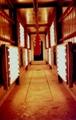 紅外線烘乾爐xytz-001 5