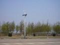 哈尔滨太阳能路灯庭院灯 1