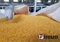 新絡FP02防滲漏平台化學品倉庫存儲桶防滲漏預防托盤平台 6