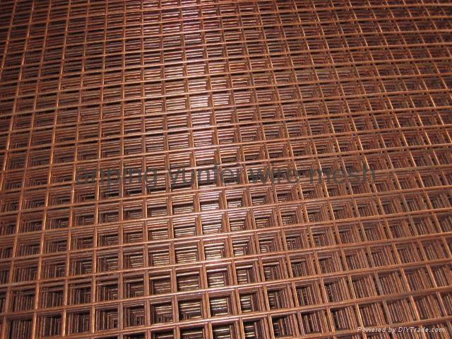 Brass Welded Wire Mesh Panel 4