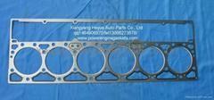 Cummins Marine Engine Parts/ M11 cylinder head gasket 4022500