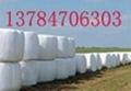 白色牧草包裝膜 3