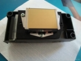 Epson DX5 printhead for Eco-solvent