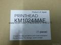 konica KM1024iMAE printhead for aqueous