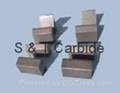 Carbide Snowplow  Inserts