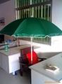河南防紫外線太陽傘 3