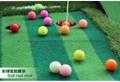 高爾夫綵球 4