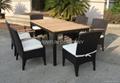 dining set, rattan furniture 2