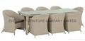 White Color Rattan Chair 2