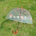 透明儿童伞