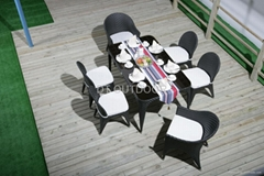 Dining tabke and chair furniture