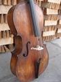 cello 4