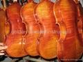 baroque violin 1