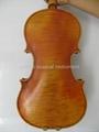 antique varnished violin