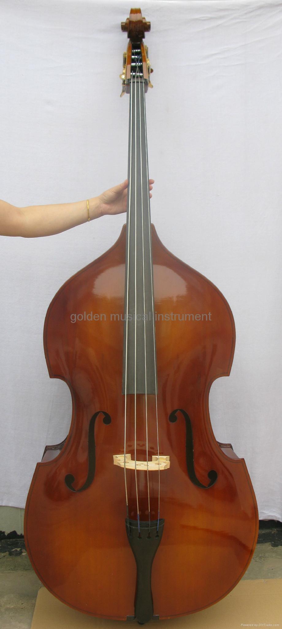 laminated double bass 5