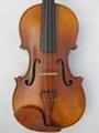 violin 5