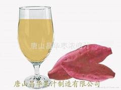 红薯浓缩汁