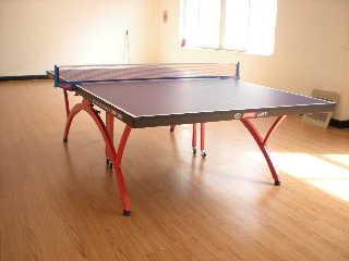 乒乓球塑膠運動地板 2