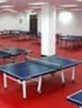 乒乓球塑膠運動地板 3