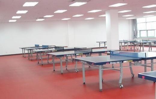 乒乓球塑膠運動地板 5