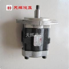 电瓶叉车用岛津液压DSG05齿轮泵