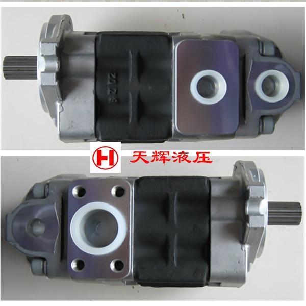 天津岛津SDY系列液压齿轮泵 2