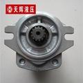 天津岛津SDY系列液压齿轮泵 3