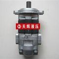 天津岛津SDY系列液压齿轮泵 5