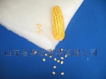 玉米纤维絮片 1