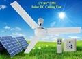 Two Years Warranty 48'' Battery Ceiling Fan 12V 25W Fan for Solar System 2