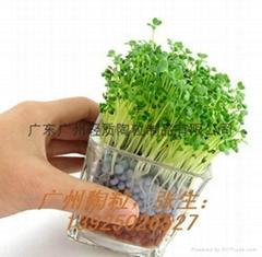 园艺绿化用陶粒