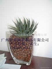 廣州花卉陶粒