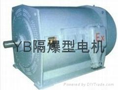 重慶煤礦化工廠用YB隔爆型電機