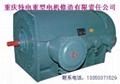 重庆煤矿化工厂用YB隔爆型电机 2