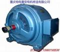 Chongqing 3-phase ac induction motor sales 3