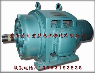 Chongqing 3-phase ac induction motor sales 2