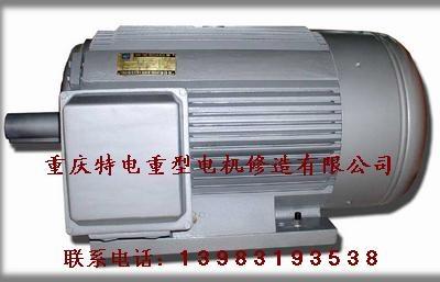 Chongqing 3-phase ac induction motor sales 4