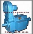 Chongqing 3-phase ac induction motor sales 5