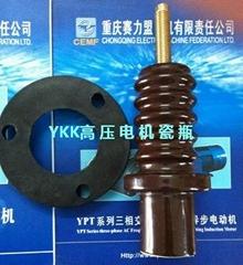 重慶賽力盟YKK高壓電機接線瓷瓶現貨發售