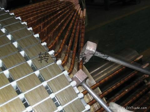 重庆修理电机绕组采用真空压力浸漆行业领先 4
