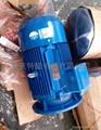 重庆赛力盟高效率节能振动小起动转距大电动机 5