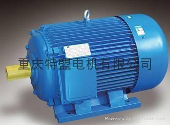 重庆赛力盟高效率节能振动小起动转距大电动机 4