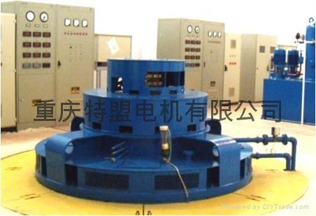 Chongqing repair turbine generator winding coil  5