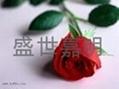 玫瑰專用酶