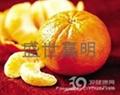 柑橘脱囊衣专用酶