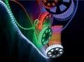 LED ROPE LIGHT,NEO-NEON, CE,ROHS,UL
